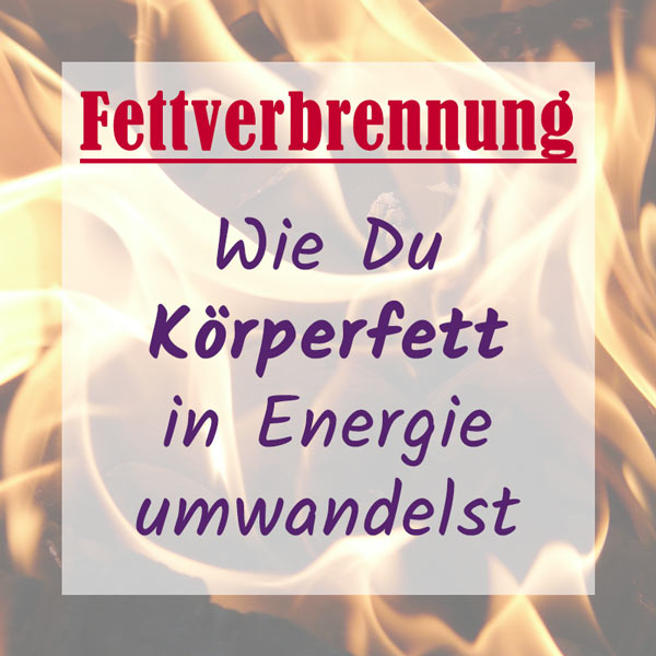 Fettverbrennung/Fettabbau durch Training
