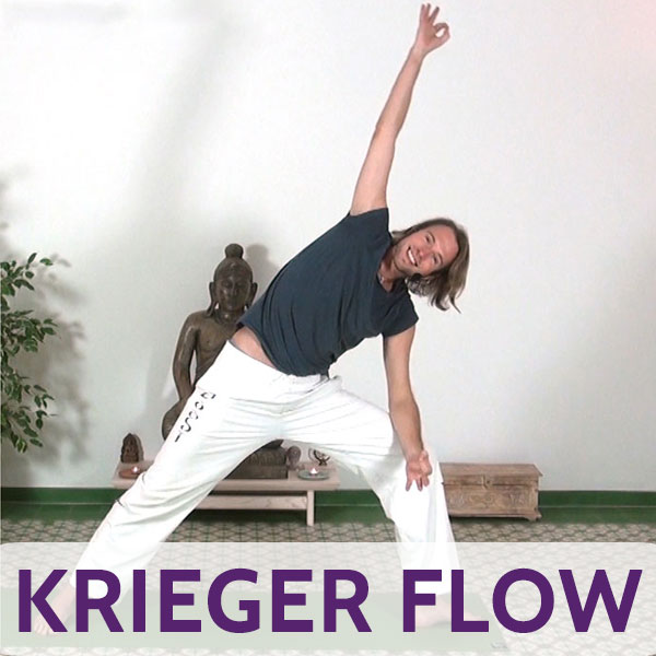 Yoga Krieger Flow Video
